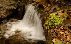 Atractie Turistica - Cascada Varciorog - Arieseni - Centru Turistic