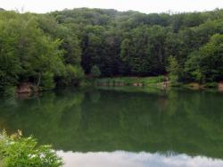 Lacul Bodi