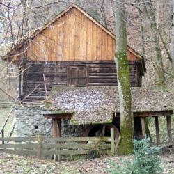Atractie Turistica - Muzeul satului - Bran - Centru Turistic