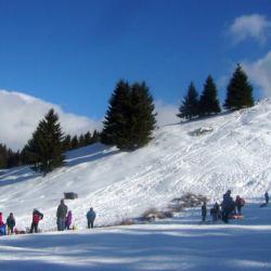 Atractie Turistica - Partii de schi - Bran - Centru Turistic