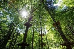 Atractie Turistica - Parc Aventura - Brasov - Centru Turistic