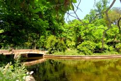 Atractie Turistica - Gradina Botanica Dimitrie Brandza - Bucuresti - Centru Turistic