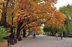 Atractie Turistica - Parcul Herastrau - Bucuresti - Centru Turistic