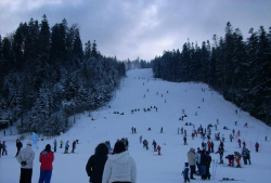Partiile de schi din Busteni