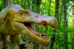 Atractie Turistica - Dino Parc - Rasnov - Centru Turistic