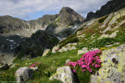 Atractie Turistica - Parcul National Retezat - Rau de Mori - Centru Turistic