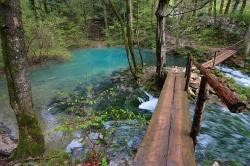 Atractie Turistica - Lacul Bei - Sasca Romana - Centru Turistic