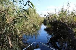 Canale si lacuri Delta Dunarii