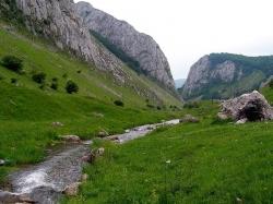 Atractie Turistica - Cheile Valisoarei - Valisoara - Centru Turistic