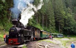 Atractie Turistica - Mocanita - Viseu de Sus - Centru Turistic