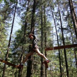 Atractie Turistica - Park Aventura - Zarnesti - Centru Turistic