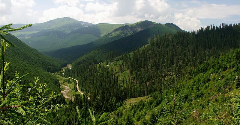 Atractie Turistica - Pasul Prislop - Borsa - Centru Turistic