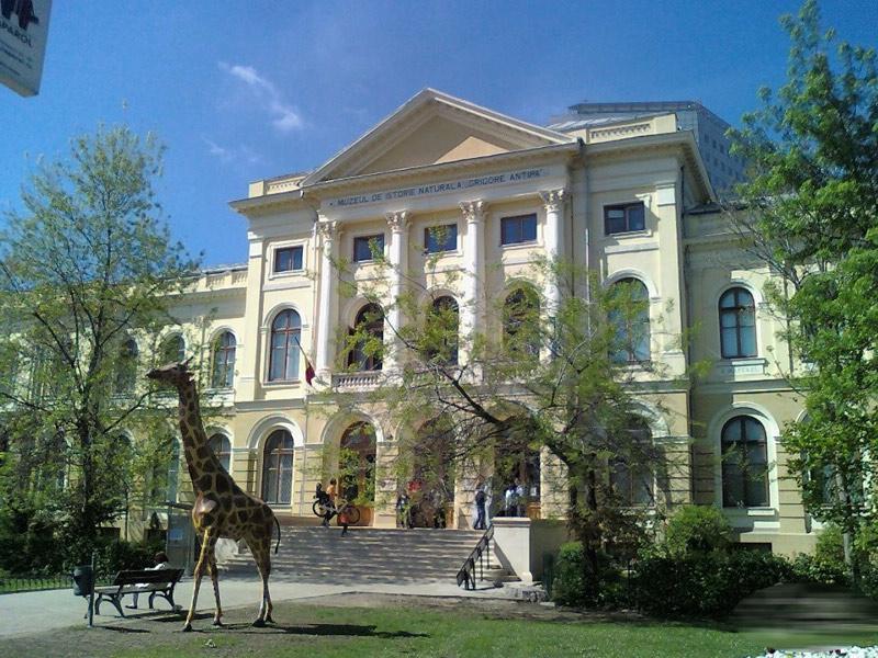 Atractie Turistica - Muzeul National de Istorie Naturala Grigore Antipa - Bucuresti - Centru Turistic