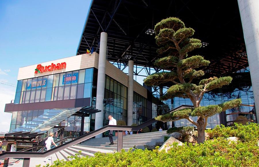 Atractie Turistica - Iulius Mall Cluj - Cluj Napoca - Centru Turistic