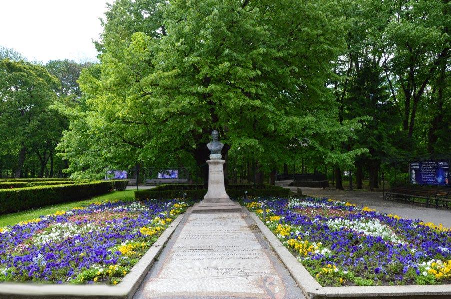 Atractie Turistica - Teiul lui Eminescu - Iasi - Centru Turistic