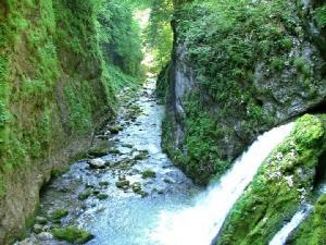 Cazare - Camping Eldorado - Gilau