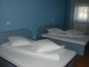 Cazare - Hostel Hanul Ursilor - Targu Neamt