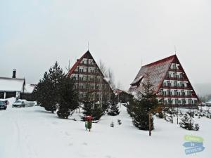 Cazare - Hotel Cheia - Cheia