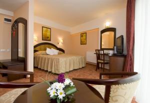 Cazare - Camera dublu matrimoniala - Hotel Ambient - Brasov