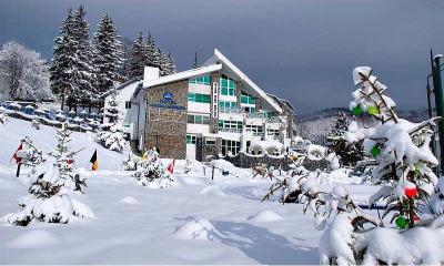 Cazare - Hotel Alexandros - Busteni