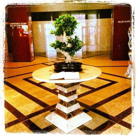 Cazare - Hotel Central Plaza - Piatra Neamt