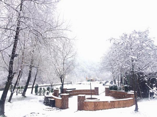 Cazare - Hotel Domeniul Dambu Morii - Brasov