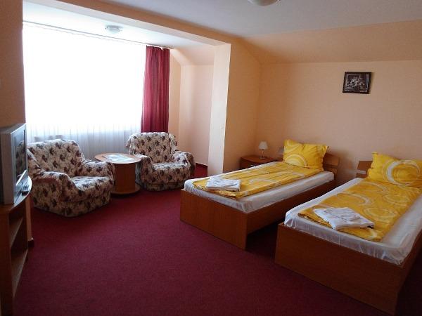 Cazare - Hotel Leon - Satu Mare