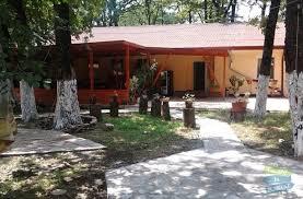 Cazare - Pensiunea Club Forest Mirage - Banesti