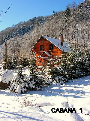Cazare - Pensiunea Rustic House - Coada Lacului Lesu