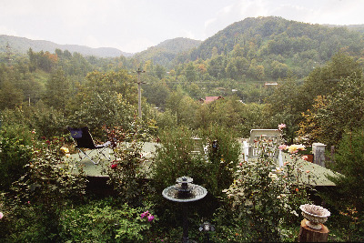 Cazare - Vila Iulia Alexia - Siriu